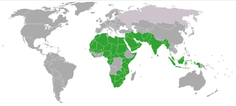 Страны, где принято многоженство