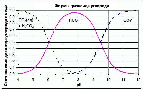 Виды карбонатов, которые способствуют щелочности воды