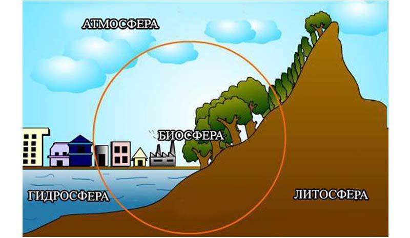 Разница между биосферой и литосферой