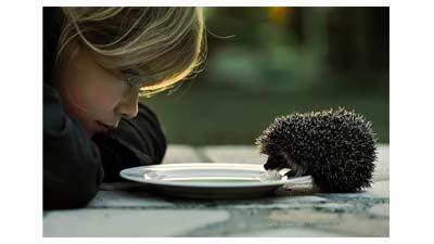 Разница между добротой и щедростью