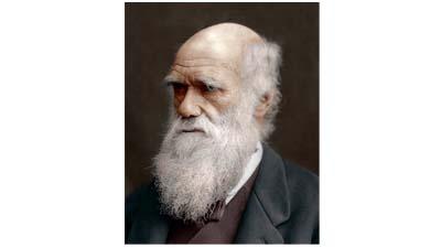 Что Дарвин понял правильно об эволюции, а что не правильно