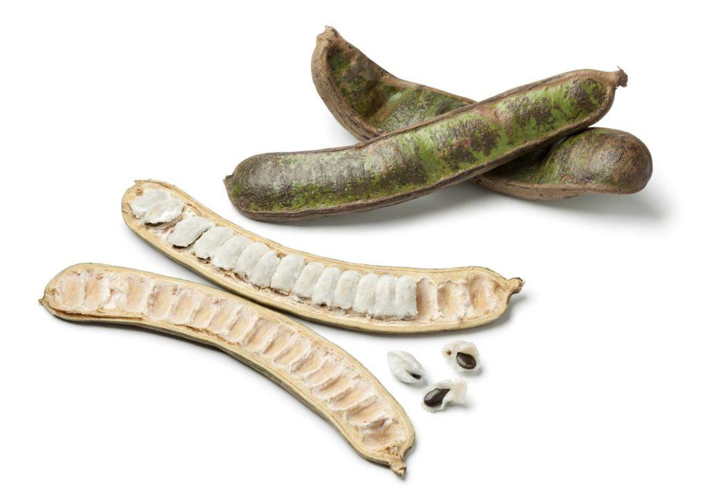 Инга съедобная или кремовый боб