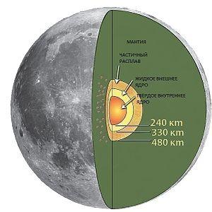 Поперечное сечение внутренней части Луны, показывающее асимметрию в толще коры между ближней и дальней сторонами и преобладание ближней стороны Марии.Указанные расстояния не в масштабе.