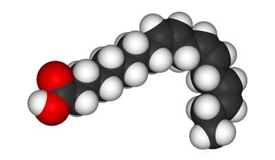Разница между альфа-липоевой кислотой и альфа-линоленовой кислотой