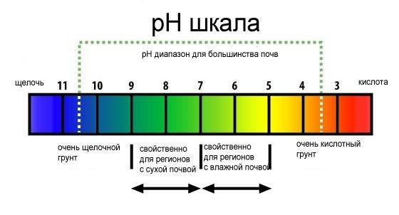 Шкала для pH почвы