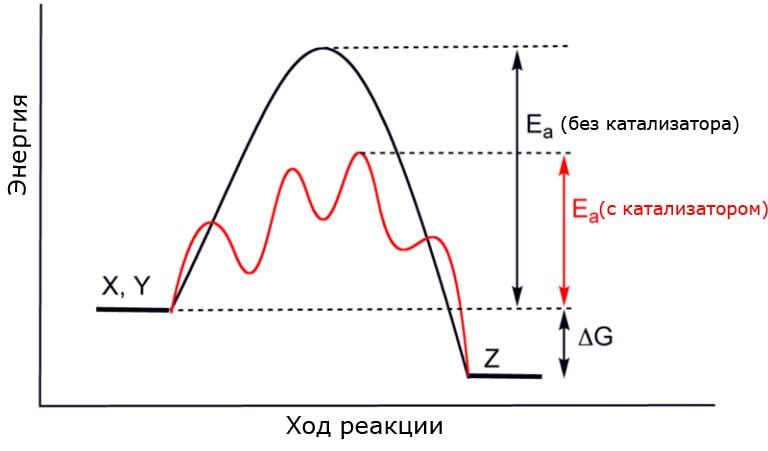 График, показывающий, как катализатор снижает энергию активации реакции