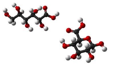 Разница между Глюконовой и Глюкуроновой кислотой