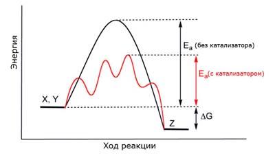 Разница между катализатором и реагентом