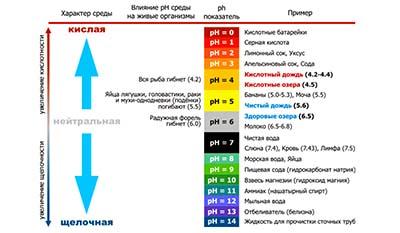 Разница между рН и Титруемой кислотностью