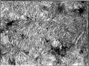 Структура Мартенситной нержавеющей стали