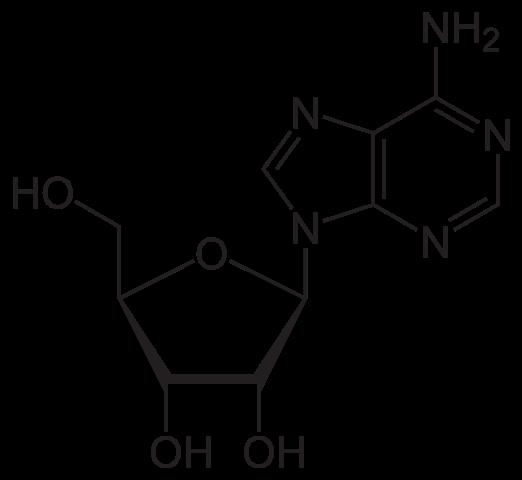 Химическая структура Аденозина