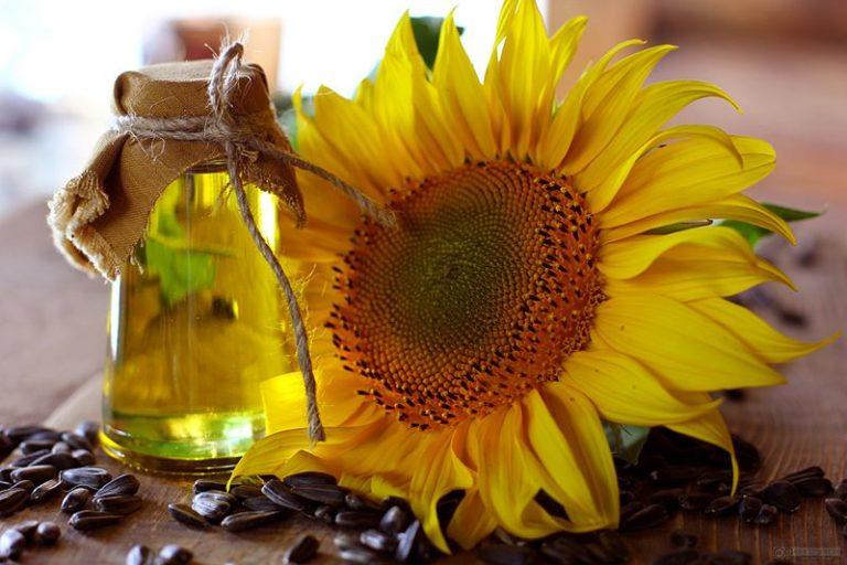 Подсолнечное масло представляет собой Полиненасыщенное жирное соединение