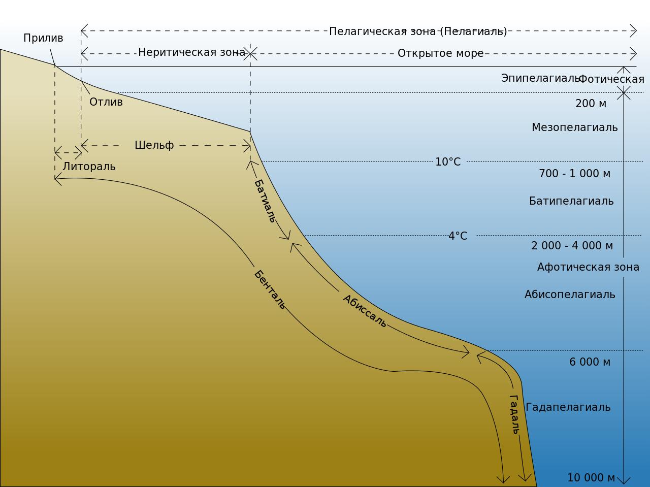 Разделение океана на экологические зоны