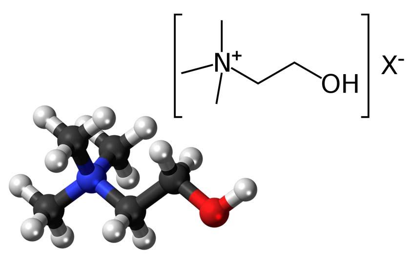 Молекулярная и химическая структура Холина