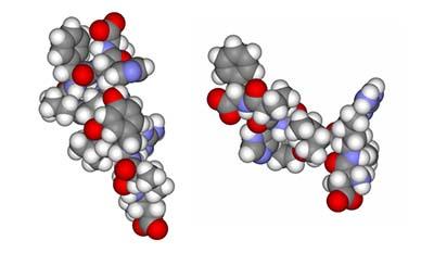 Разница между Ангиотензином 1 и 2