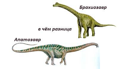 Разница между Апатозавром и Брахиозавром