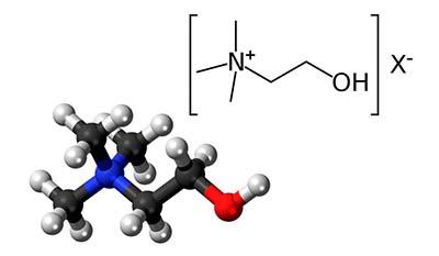 Разница между Холином и Фосфатидилхолином
