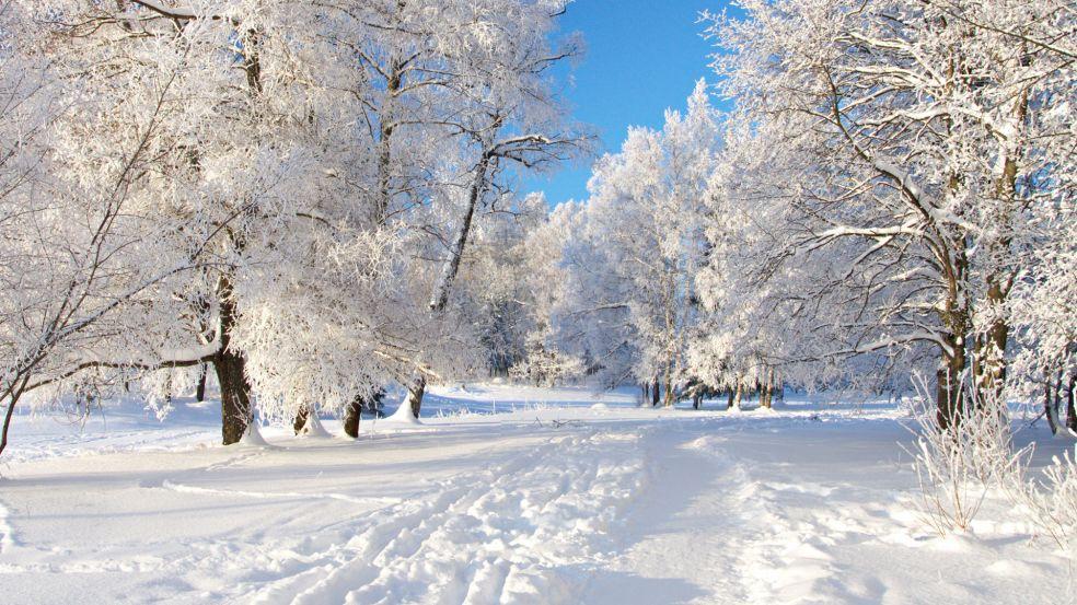 Снег это замерзшая вода и кристаллизовавшаяся
