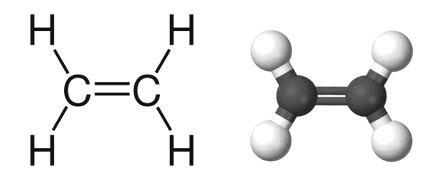 Химическая и молекулярная структура Этилена