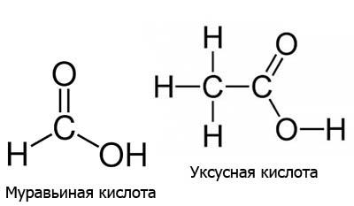 Разница между Муравьиной и Уксусной кислотой