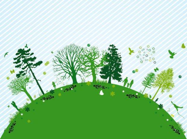 Аутэкология - изучает взаимодействие отдельного организма с окружающей средой