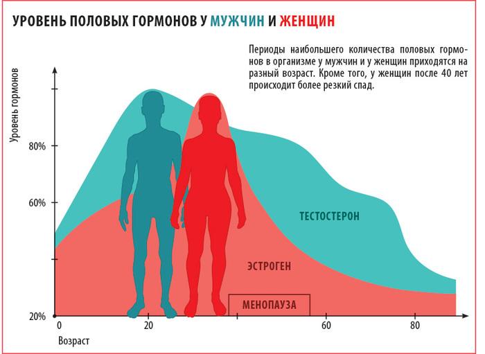 Половые гормоны у мужчин и женщин