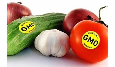 Разница между Генной инженерией и Генетической модификацией