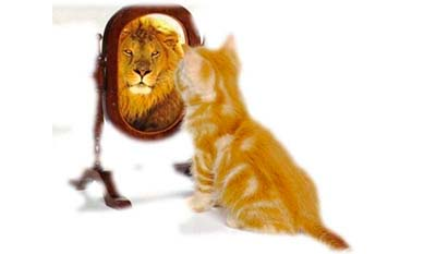 Разница между Самооценкой и Самоактуализацией