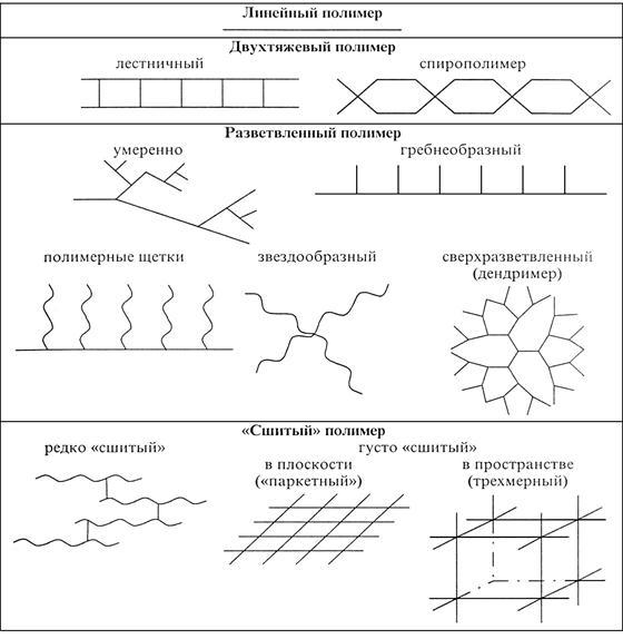 Основные структуры молекул полимеров