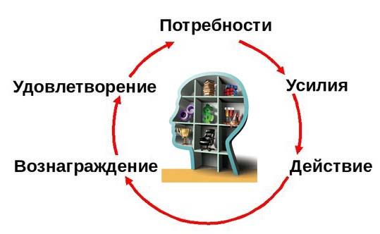 Мотивационный цикл