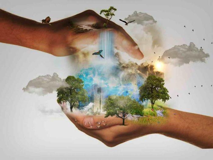 Биоцентризм ставит интересы живой природы выше интересов человека