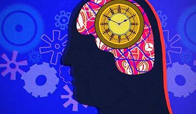 Разница между Биологическими часами и Циркадным ритмом