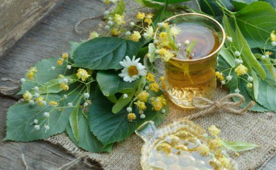 Липовый чай из цветков