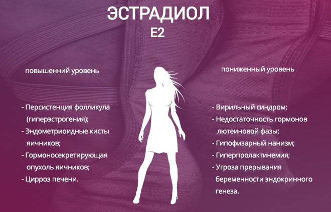 Уровень Эстрадиола у женщин