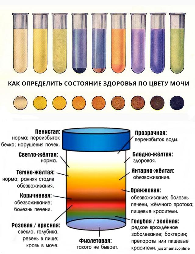 О чём говорит цвет Мочи