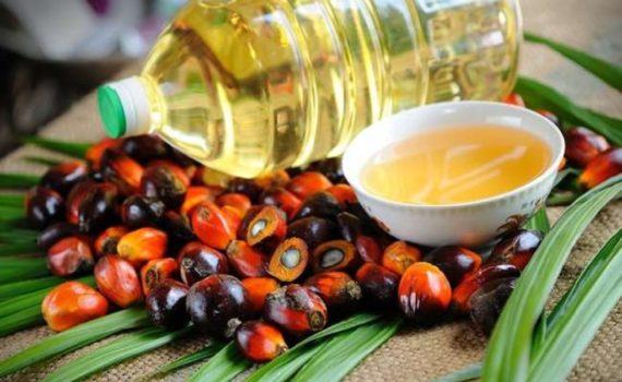 Пальмитиновая кислота является основным компонентом пальмового масла