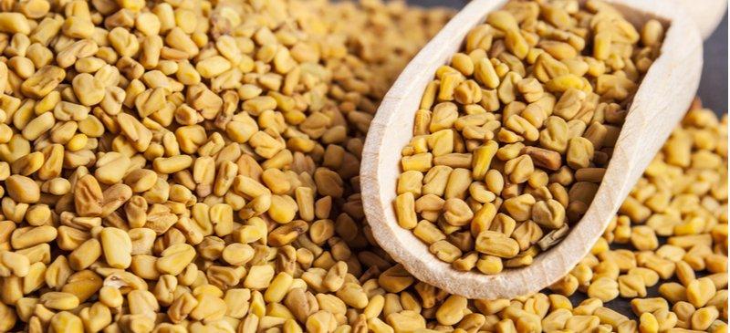 Семена Пажитника полезны для пищеварения, метаболического синдрома и многого другого