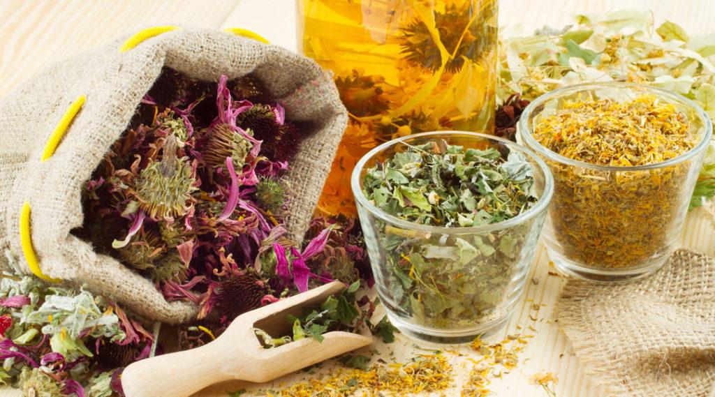 Приём Противовоспалительных трав могут снизить риск заболеваний и поддержать здоровье.