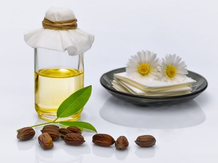 Масло жожоба очень полезно для здоровья кожи и волос