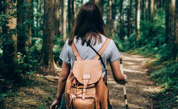 Экотерапия - это подход к психическому здоровью, в котором для улучшения чувства благополучия используется положительные эффекты природы