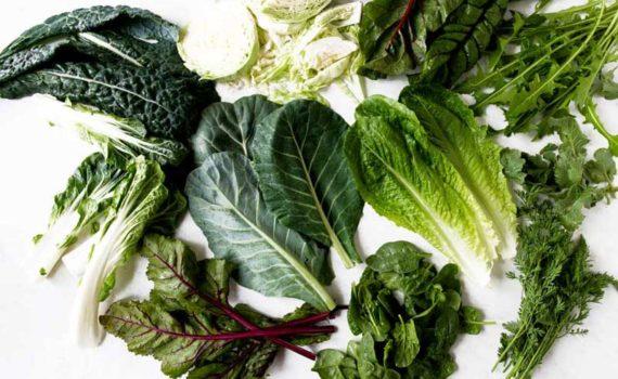 истовая Зелень может помочь от болезней сердца, ожирения, диабета, потери зрения и некоторых видов рака