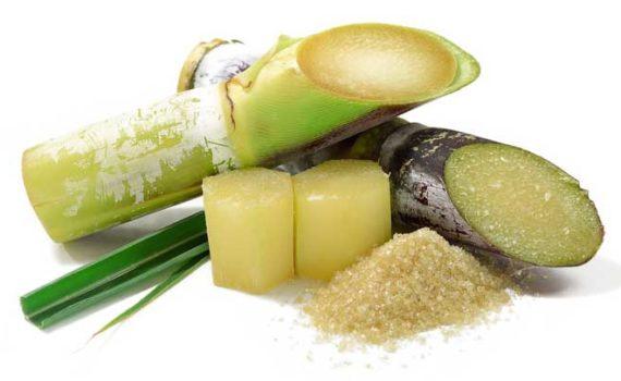 Поликозанол, в основном получают из сахарного тростника и принимают его для снижения высокого уровня холестерина, регулирования артериального давления, свертывания крови и уровня сахара в крови