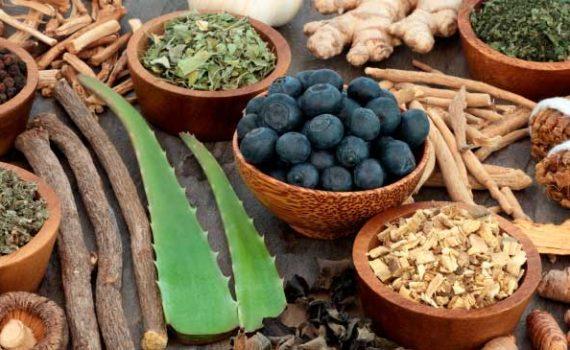 Адаптогены защищают от стресса уравновешивая гормон кортизол, и поддерживая способность организма оставаться в гомеостазе и адаптироваться к болезням или усталости